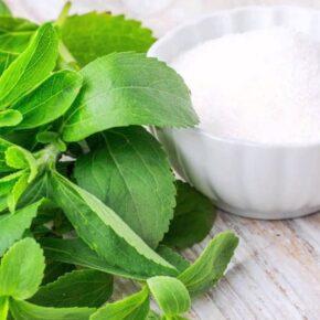 Stevia, Nyírfacukor, Xilit, Eritritol