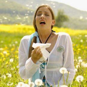 Allergia, szénanátha