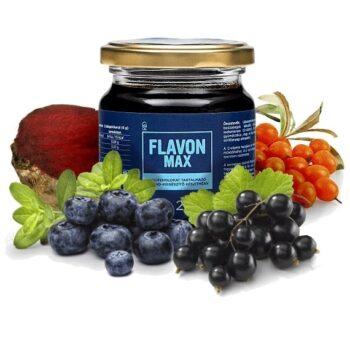 Flavon Max gyógynövény koncentrátum - 240g