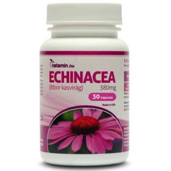 Netamin Echinacea (Bíbor kasvirág) 380mg kapszula - 30db
